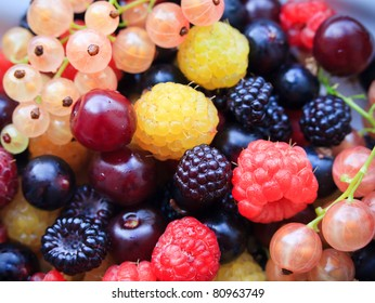 fresh blackberries, raspberries, currant and cherry