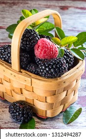 fresh blackberries in a wicker basket and one raspberry
