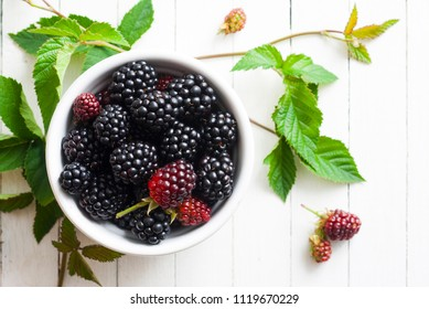 fresh blackberry fruits on white wood table background