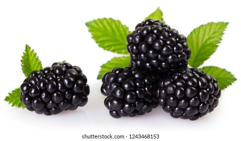fresh blackberry isolated on white background