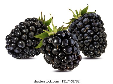 Fresh blackberry isolated on white background with clipping path