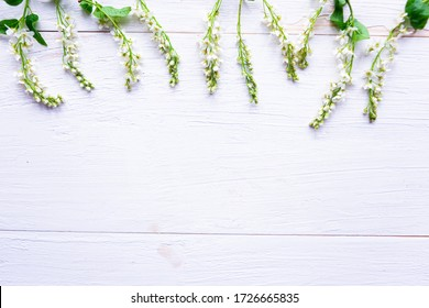Fresh blooming spring flowers on wooden background. Copy space for the text. Springtime concept