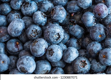 Fresh blueberries background with copy space, macro texture, close up. Surface is covered with a thick layer of blueberries.