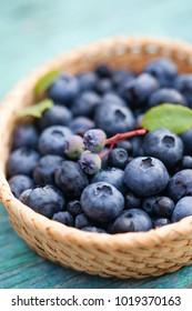 fresh blueberries in basket