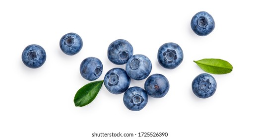 Fresh blueberries with bluberry leaves isolated on white background. Top vew. - Shutterstock ID 1725526390