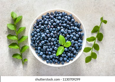 Fresh blueberries in a bowl, top view on white background. Forest blue berries, healthy food concept.
