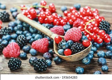fresh blueberries, currants, blackberries, cranberries and raspberries. Focus berries in spoon
