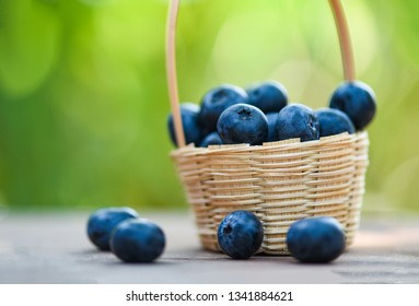 Fresh blueberries fruit in basket on wooden with nature green blur background - selective focus