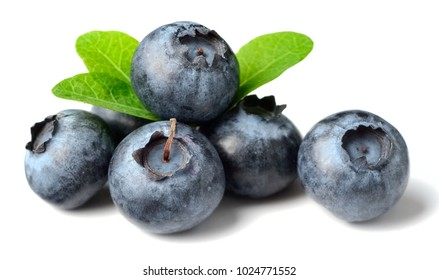 fresh blueberries with green leaves isolated on the white background