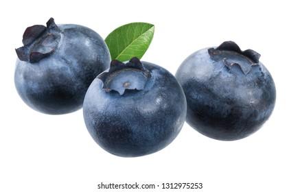fresh blueberries with leaf