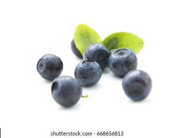 Fresh blueberries with leaves in the  bowl on white background