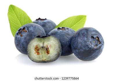 Fresh blueberries with leaves isolated on white background. Macro, studio shot