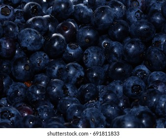 Fresh blueberries in macro