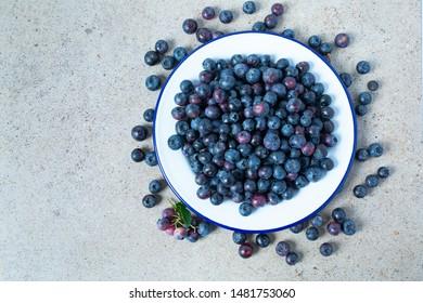 fresh blueberries in a metallic bowl