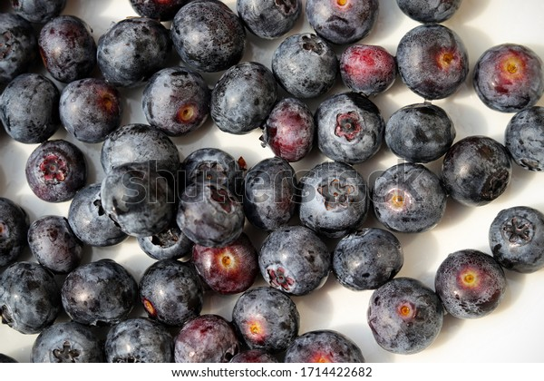 Fresh blueberries on a plate