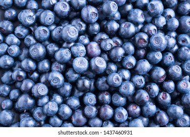 Fresh blueberry background. Texture blueberry berries close up. Ripe bilberry background. Texture bilberry berries close up. Top view. Berry background. Blueberries picked in forest.