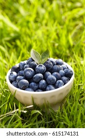 Fresh blueberry in a bowl on the grass. diet and health food concept.