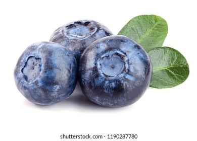 fresh blueberry with leaf isolated on white background
