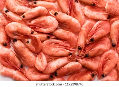 Fresh boiled shrimp cocktail close up view, background or texture. Seafood, shellfish.