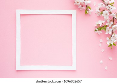 Fresh branches of cherry white blossoms with petals on pastel pink background. Soft light color. Mockup for positive ideas. Empty place for inspirational, emotional, sentimental text or quote.