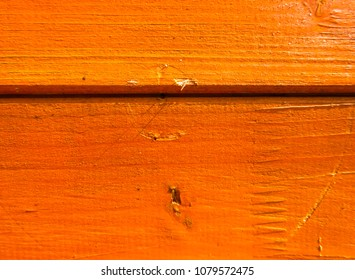 Fresh bright orange color of a wall from a natural wood. Texture and background. Interior Design