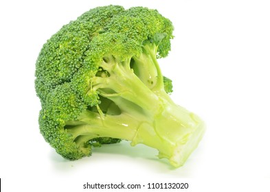 Fresh broccoli isolated on a white background