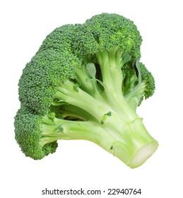 Fresh broccoli, isolated on white