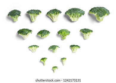 Fresh broccoli on white background.