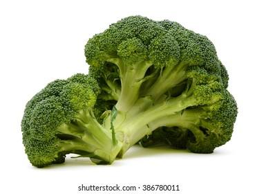 fresh broccoli on the white background