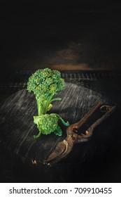 Fresh broccoli in a rustic style. Low key. Art. Copy space.