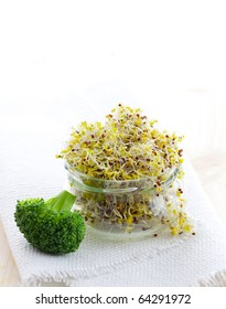 fresh broccoli sprouts in a glass