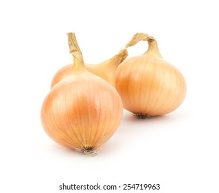Fresh bulbs of onion isolated on a white background