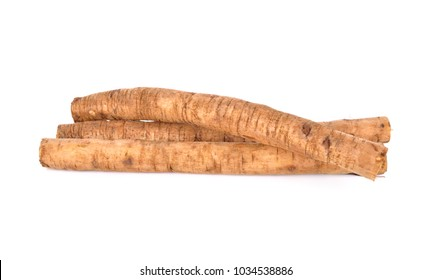 fresh burdock root or Gobo on white background