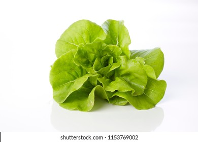 Fresh butterhead lettuce on a white background, vegetable salad