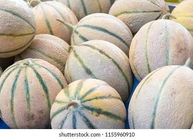 Fresh cantaloupe melons