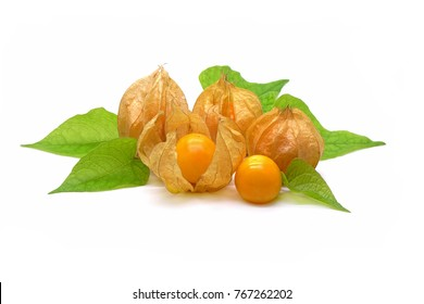 Fresh Cape Gooseberry (Physalis peruviana) with green leaves , isolated on white background.