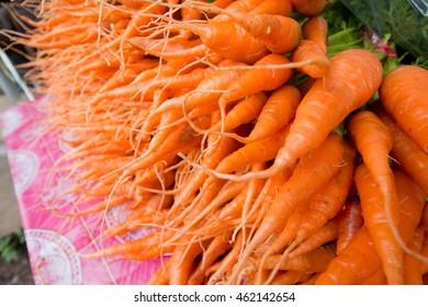 fresh carot