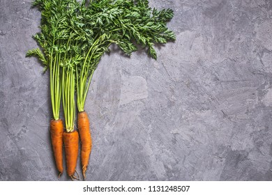 Fresh carrots bunch on grey plastered background with copy space. Top view