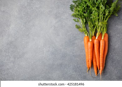 Fresh carrots bunch on a grey stone background. Top view. Copy space.