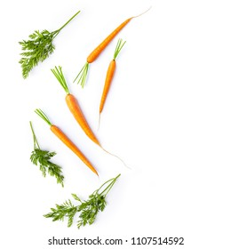 Fresh carrots and carrot stalks on white background; flat lay; organic veggetables