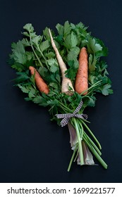 Fresh carrots and celery root on a bed of parsley and celery leaves