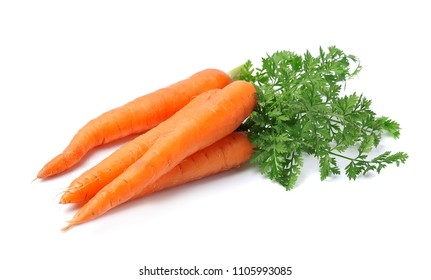 Fresh carrots isolated closeup on a white background.