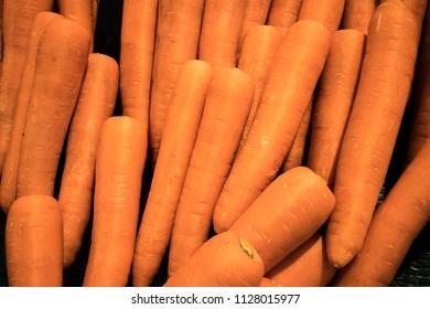 fresh carrots at market