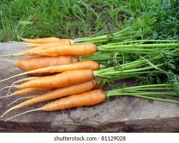 fresh carrots on a wooden board