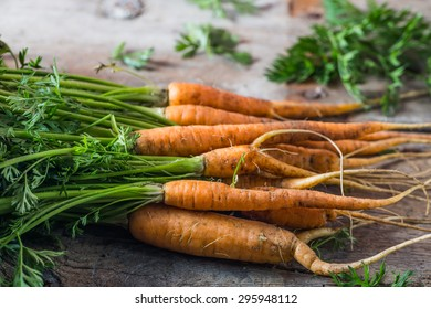 Fresh carrots picked from the garden on wooden table