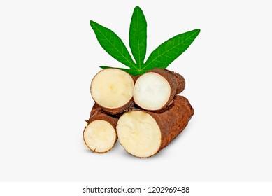 Fresh cassava on isolated on white background
