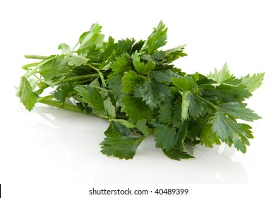 fresh celery as herbs isolated over white