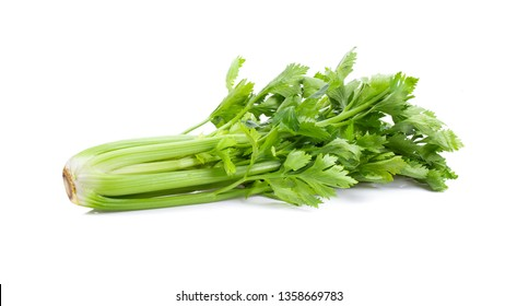 Fresh celery isolated on white background. full depth of field