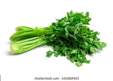 Fresh Celery isolated on white background.