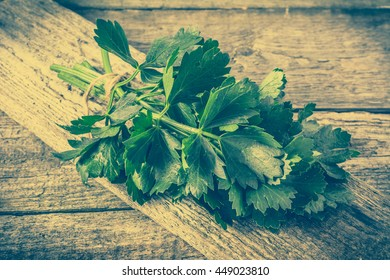 Fresh celery leaves on rustic table, the concept of spices used for healthy cooking, vintage photo